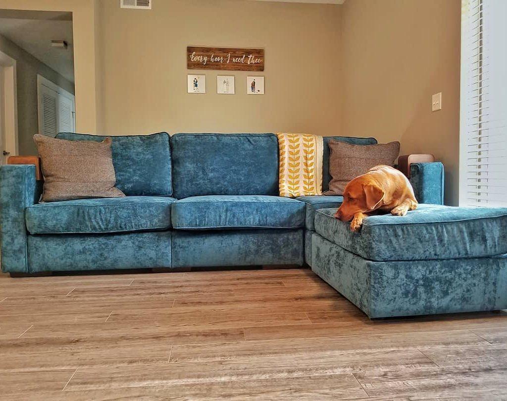 Lovesac Sofa Reviews Price Quality More Home Of Cozy